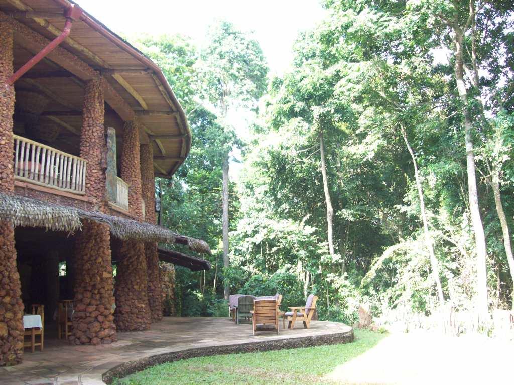 Mabira Forest Lodge